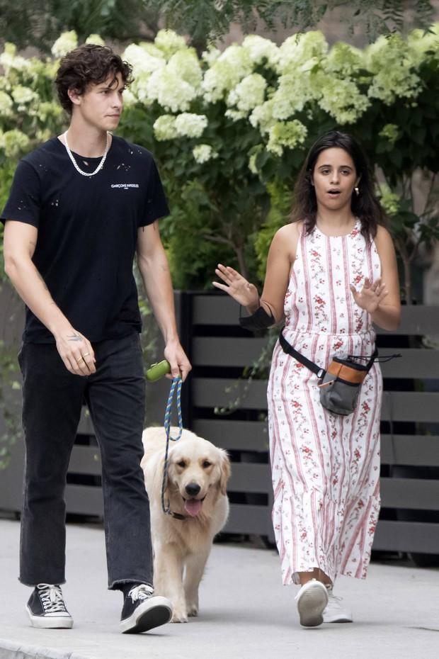 Shawn - Camila đi công viên: Chàng vẫn mlem hết sức, nàng bỗng được chúc mừng vì nghi vấn mang thai - Ảnh 5.