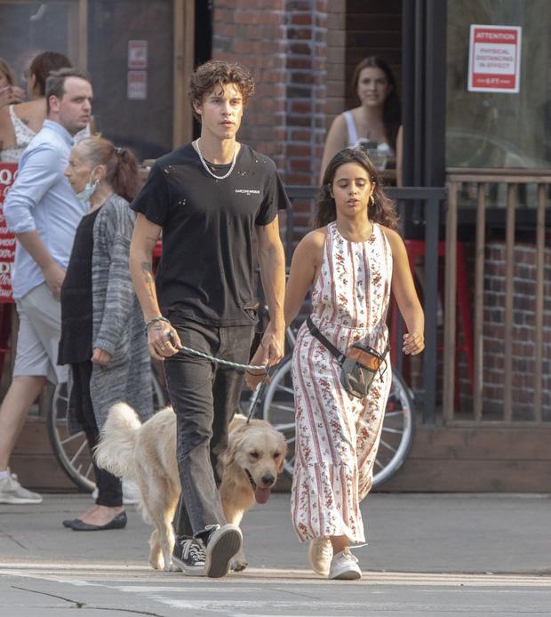 Shawn - Camila đi công viên: Chàng vẫn mlem hết sức, nàng bỗng được chúc mừng vì nghi vấn mang thai - Ảnh 6.
