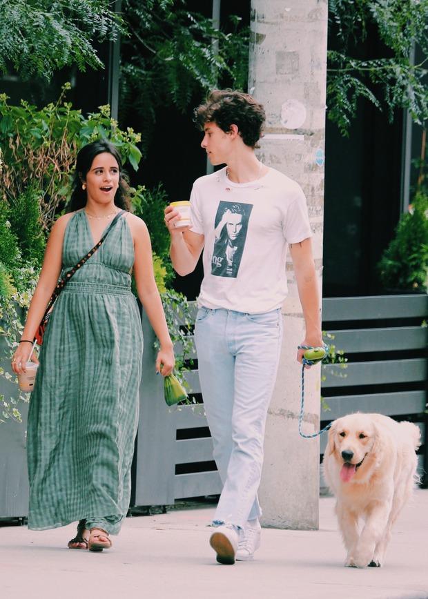 Shawn - Camila đi công viên: Chàng vẫn mlem hết sức, nàng bỗng được chúc mừng vì nghi vấn mang thai - Ảnh 7.
