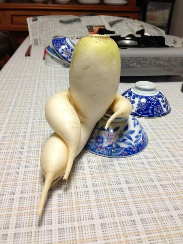 Xỉu ngang trước những loại rau củ quả mọc đủ hình thù kỳ quái, xem ảnh mới thấy sức mạnh của thiên nhiên kinh khủng thế nào! - Ảnh 7.