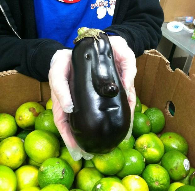 Xỉu ngang trước những loại rau củ quả mọc đủ hình thù kỳ quái, xem ảnh mới thấy sức mạnh của thiên nhiên kinh khủng thế nào! - Ảnh 17.
