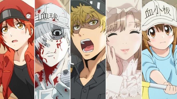 Netizen phát rồ với tế bào ung thư đẹp trai nhất quả đất ở anime 16+ cực bạo, xem xong còn thấy học giỏi Sinh - Lý hẳn ra? - Ảnh 4.