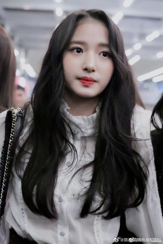 Show thực tế Girls Planet 999 của Mnet: 10 cái tên kỳ cựu mà thí sinh gốc Việt cần phải dè chừng! - Ảnh 11.