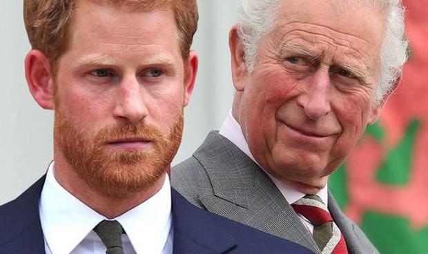 Lời trách móc của Harry với cha đẻ khiến tương lai 3 con nhà Công nương Kate có nhiều thay đổi - Ảnh 1.
