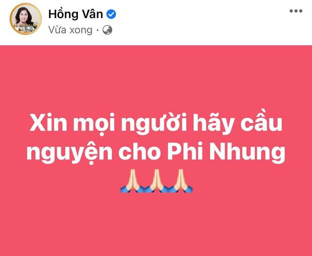 Lệ Quyên, Phương Thanh và cả showbiz đang hướng về Phi Nhung, cầu nguyện cho nữ ca sĩ qua cơn nguy kịch - Ảnh 9.