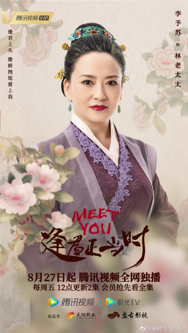 Phim vô danh bị tố đạo poster Minh Lan Truyện đến 99%, fan còn tưởng Triệu Lệ Dĩnh có thính mới mà không nói - Ảnh 5.