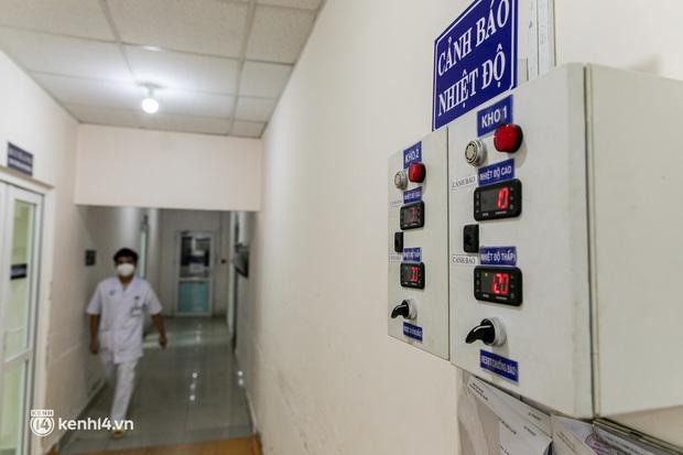 Bên trong kho máu đang cạn kiệt của Trung tâm Truyền máu BV Chợ Rẫy: Chúng ta có thể chờ dịch bệnh qua đi nhưng người bệnh không thể chờ máu! - Ảnh 8.