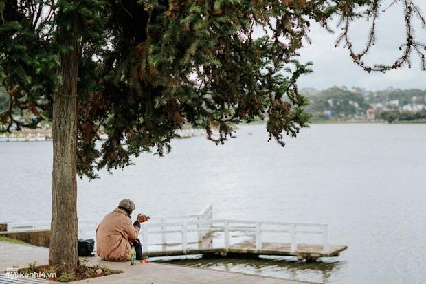 Ảnh hiếm: Một Đà Lạt chưa bao giờ hiu quạnh như thế trong mùa cao điểm du lịch, cảnh đẹp nhưng người có vui? - Ảnh 11.
