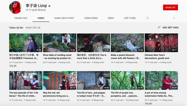 Tiên nữ đồng quê Lý Tử Thất tuyên bố tạm dừng hoạt động YouTube, lý do được đưa ra khiến dân mạng ngỡ ngàng - Ảnh 4.