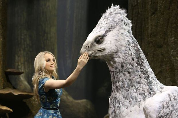 Loài vật thần bí nổi tiếng bậc nhất Harry Potter hóa ra cũng có thật ở hậu trường, bây giờ khán giả nếu thích vẫn có thể đến thăm! - Ảnh 9.