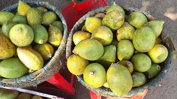 Ít ai biết ở Việt Nam còn có 1 loại quả chưng Tết rất đặc biệt: Toả hương thơm không kém gì bưởi, ăn cực lạ và ngon - Ảnh 2.