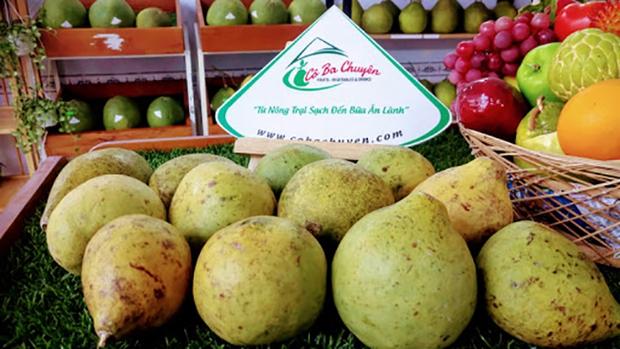 Ít ai biết ở Việt Nam còn có 1 loại quả chưng Tết rất đặc biệt: Toả hương thơm không kém gì bưởi, ăn cực lạ và ngon - Ảnh 3.