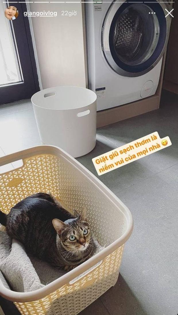 Giang Ơi bày tips giữ máy giặt vừa bền vừa sạch, xem xong khối người giật mình vì thường bỏ qua 1 bước - Ảnh 14.