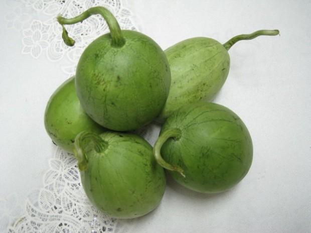 Việt Nam có 1 loại dưa nấu canh ngon bá cháy: Cứ tưởng quả gì lạ lắm, ngờ đâu ai cũng từng ăn ít nhất 1 lần trong đời - Ảnh 2.