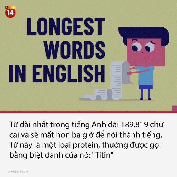 14 sự thật thú vị nhưng cũng cực lạ về thế giới quanh ta, càng đọc càng thấy bõ tiền mạng phải đóng mỗi tháng - Ảnh 10.