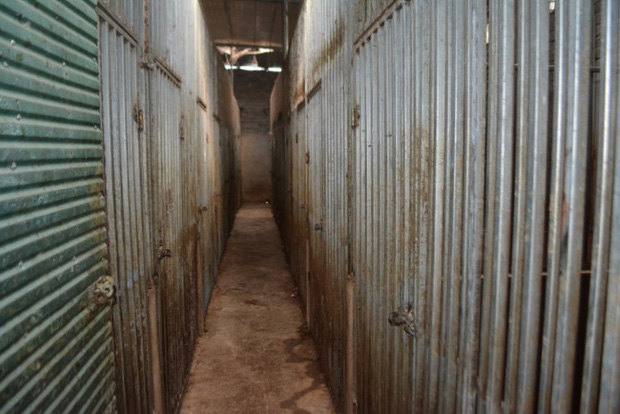 Vụ nuôi nhốt 17 con hổ trong nhà như nuôi heo: Chủ nhà xây tầng hầm rộng cả trăm mét để tránh bị phát hiện - Ảnh 3.
