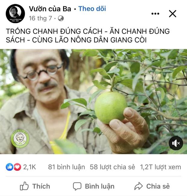 Thăm khu vườn đầy ắp cây trái ở ngoại ô của NS Giang Còi, gần 1 tháng trước khi mất lão nông vẫn say sưa trồng chanh - Ảnh 3.