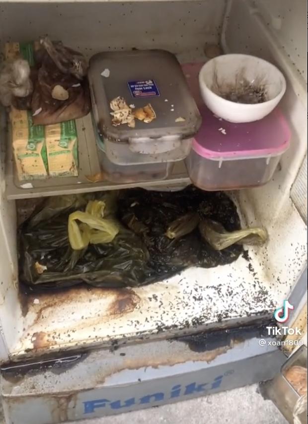 Về quê nhưng quên dọn tủ lạnh, khi trở lại nhà trọ nữ sinh sốc nặng khi thấy cảnh tượng đáng sợ bên trong - Ảnh 4.