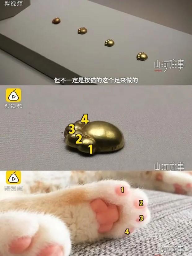 Khai quật lăng mộ, đội khảo cổ đào được 5 miếng trang sức hình chân mèo 2700 tuổi bằng vàng ròng siêu đáng yêu - Ảnh 3.