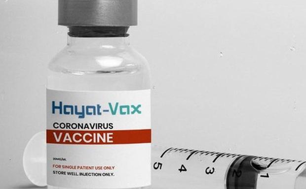Bộ Y tế phê duyệt vắc xin phòng COVID-19 mới có tên Hayat -Vax - Ảnh 1.