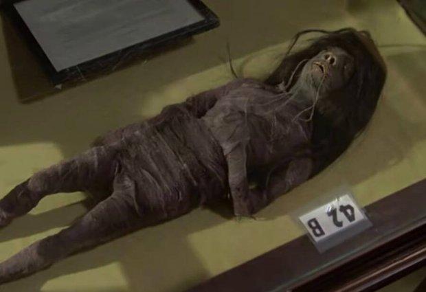 Chiếc đầu rùng rợn được dùng làm đạo cụ trong hàng loạt bộ phim hoá ra là… đầu người thật và phát hiện đầy bất ngờ của giới khoa học - Ảnh 1.