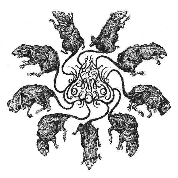 Bắt được 5 con chuột nhắt dính đuôi vào nhau, người đàn ông tá hỏa khi mục kích hiện tượng xúi quẩy bậc nhất từ thời Trung cổ - Ảnh 4.