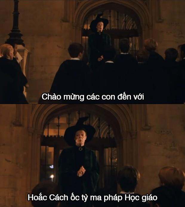 Ngất xỉu khi tên riêng trong Harry Potter được phiên âm Hán Việt: Xoắn hết cả lưỡi, nghe tên Hogwarts hết muốn đi học! - Ảnh 4.