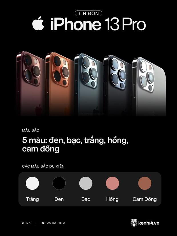Tất tần tật tin đồn về 4 mẫu iPhone 13 trước giờ ra mắt vào 0h đêm nay! - Ảnh 2.