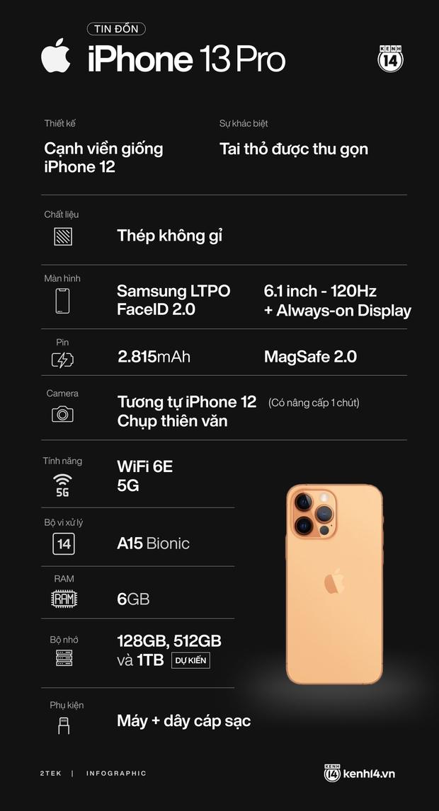 Tất tần tật tin đồn về 4 mẫu iPhone 13 trước giờ ra mắt vào 0h đêm nay! - Ảnh 8.