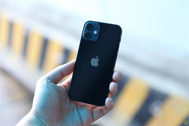 """5 mẫu iPhone chớ dại mà """"xuống tiền"""" thời gian này, nếu không muốn phải tiếc hùi hụi khi iPhone 13 ra mắt - Ảnh 3."""