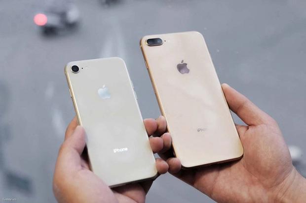 """5 mẫu iPhone chớ dại mà """"xuống tiền"""" thời gian này, nếu không muốn phải tiếc hùi hụi khi iPhone 13 ra mắt - Ảnh 5."""