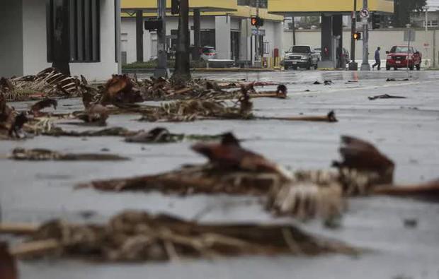 Mỹ: Bão Nicholas tấn công vùng duyên hải vịnh Mexico, mưa như trút nước gây ngập lụt, mất điện - Ảnh 9.
