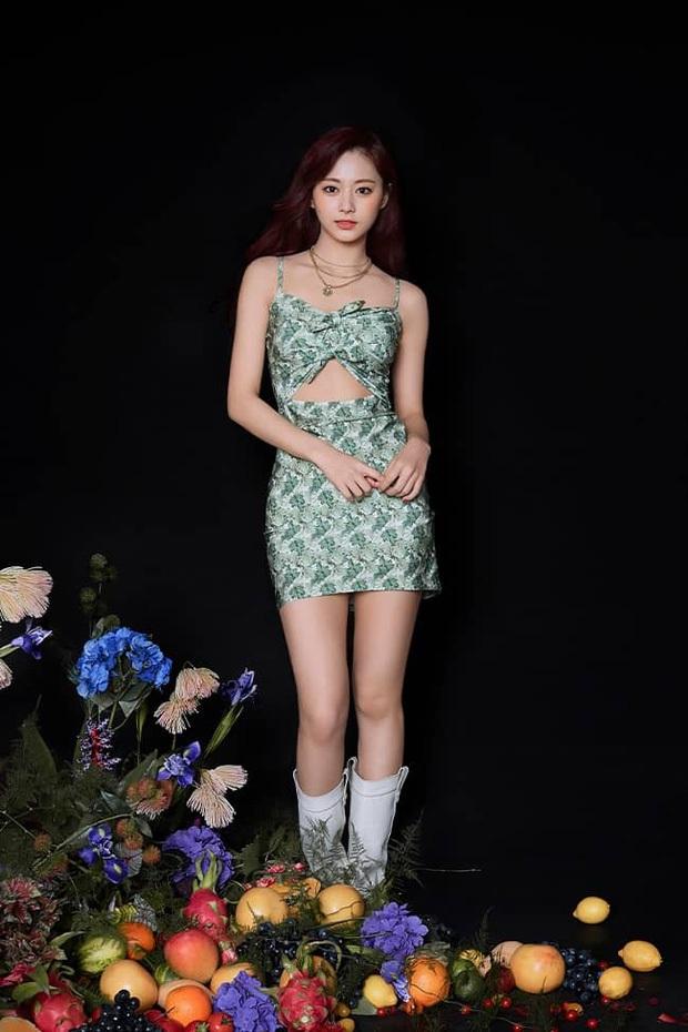 Thế nào là body của Tzuyu (TWICE) - nữ thần Kpop đứng đầu top 100 mỹ nhân đẹp nhất thế giới? - Ảnh 13.