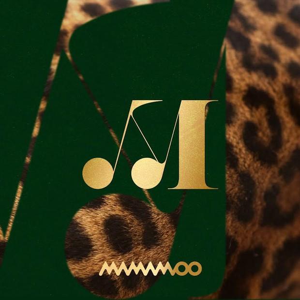 Girlgroup Gen 3 bán album chạy nhất: Comeback lia lịa nhưng TWICE có đủ sức cho BLACKPINK, Red Velvet ngửi khói? - Ảnh 2.