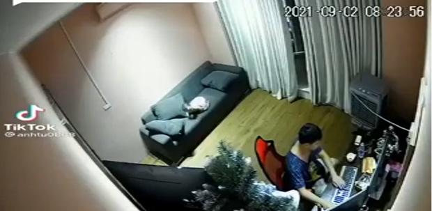 """Bố mải """"ôm"""" máy tính để con ngã từ trên ghế xuống đất, hành động sau đó bị chê trách vì quá nguy hiểm - Ảnh 1."""