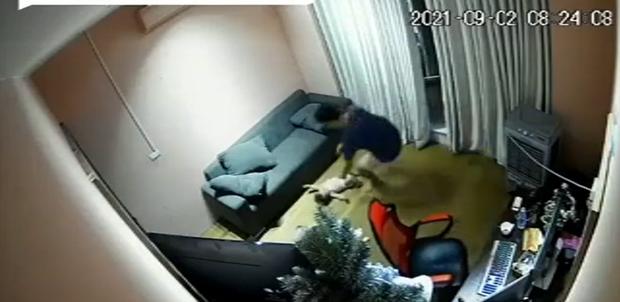 """Bố mải """"ôm"""" máy tính để con ngã từ trên ghế xuống đất, hành động sau đó bị chê trách vì quá nguy hiểm - Ảnh 2."""