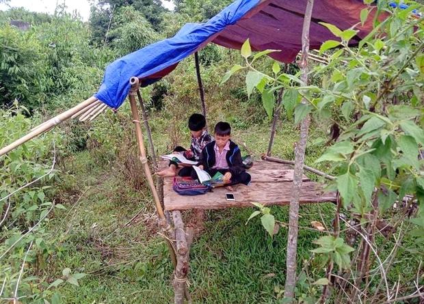 Phụ huynh lên núi dựng lán tạm cho con bắt sóng 3G học online - Ảnh 1.