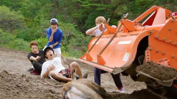 4 phim Hàn bị chỉ trích vì ngược đãi động vật: Căng nhất là màn chọi chó ở bom tấn của Lee Jun Ki - Ảnh 6.
