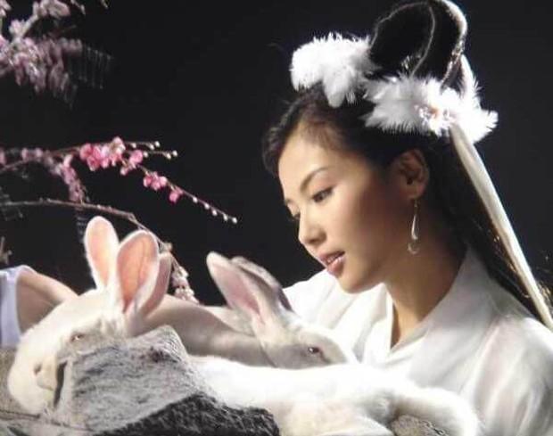 7 nàng Hằng Nga đẹp nhất màn ảnh Hoa ngữ: Mỹ nhân Tây Du Ký không có đối thủ, bất ngờ nhất là nhan sắc của Trịnh Sảng - Ảnh 11.