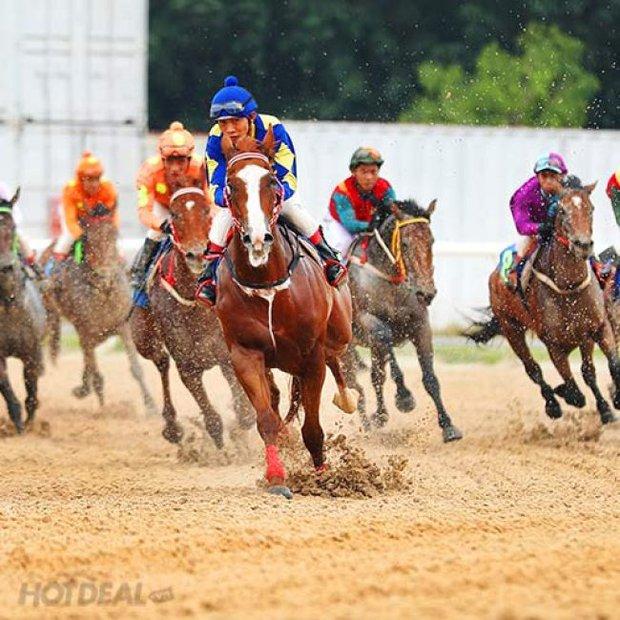 Bí mật của những con ngựa đua bạc tỷ ở Trường đua Đại Nam qua lời kể của đại gia Phương Hằng: Quý vị biết không, tụi nó... - Ảnh 3.