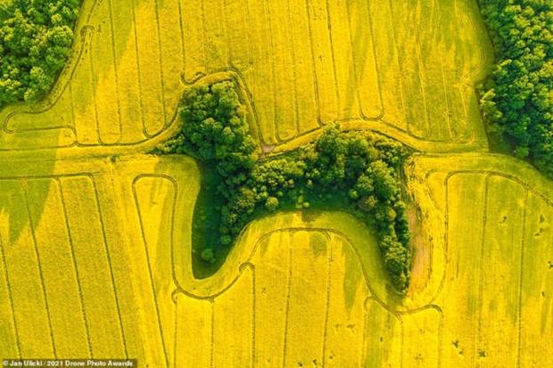 Vẻ đẹp ngoạn mục của những bức ảnh chụp từ máy bay không người lái - Ảnh 11.