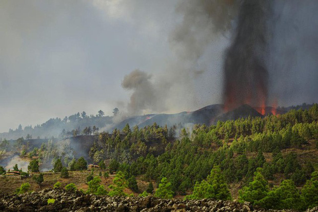 Núi lửa phun trào ở quần đảo Canaria (Tây Ban Nha), hàng nghìn người phải sơ tán - Ảnh 4.