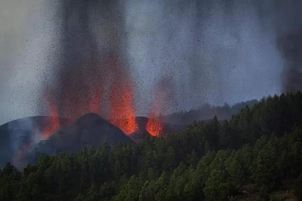 Núi lửa phun trào ở quần đảo Canaria (Tây Ban Nha), hàng nghìn người phải sơ tán - Ảnh 6.