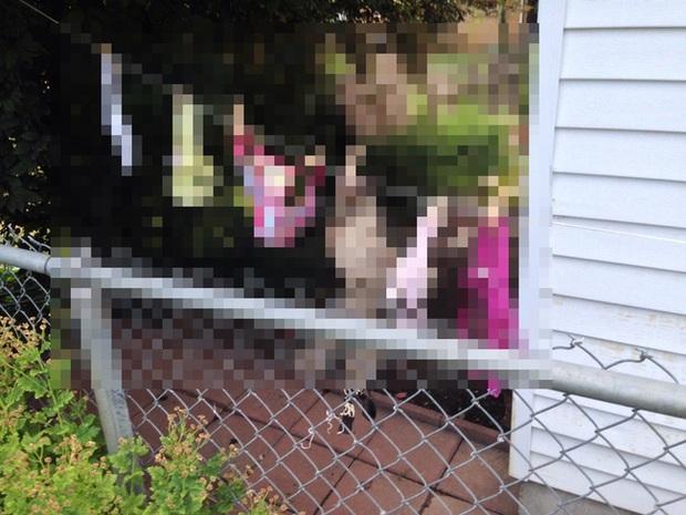 Người phụ nữ gửi đơn yêu cầu cảnh sát bắt giữ hàng xóm vì tội phơi nội y khắp sân, lý do đưa ra khiến tất cả ngã ngửa - Ảnh 2.