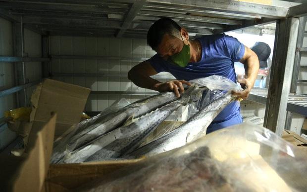 Hàng trăm tấn hải sản chất đầy kho đông lạnh không bán được vì dịch Covid-19 - Ảnh 7.