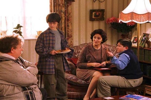 Tiết lộ lý do cực đen tối khiến Harry Potter bị cả nhà Dursley hành hạ: Bằng chứng được sắp đặt từ tập 1 mà không ai phát hiện? - Ảnh 2.