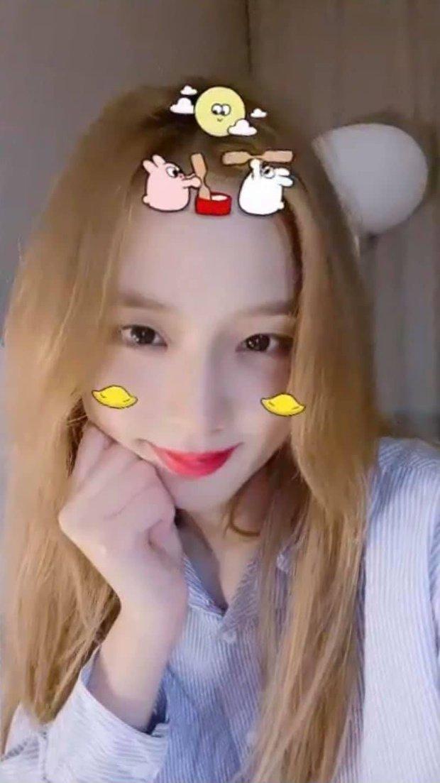 Jisoo (BLACKPINK) được netizen gọi là chúa tể filter, chỉ cần soi ảnh selfie sẽ hiểu vì sao! - Ảnh 2.