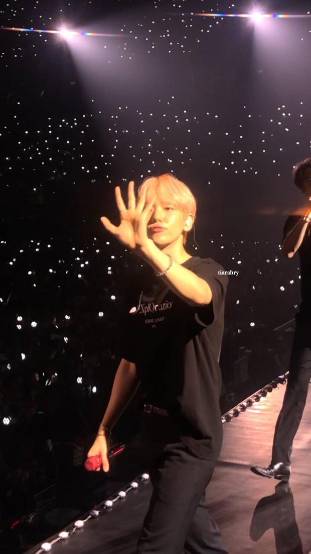 Cảm giác đi concert vé đứng là thế nào: Ngắm idol bằng camera thường rung lắc không dìm nổi nhan sắc cùng body siêu đỉnh - Ảnh 18.