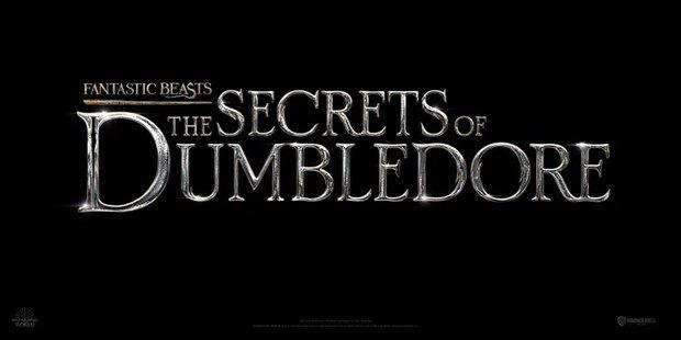 Bí mật của thầy Dumbledore sẽ được phim mới lật mở, phải chăng là thảm án sát hại em ruột chấn động thế giới Harry Potter? - Ảnh 1.