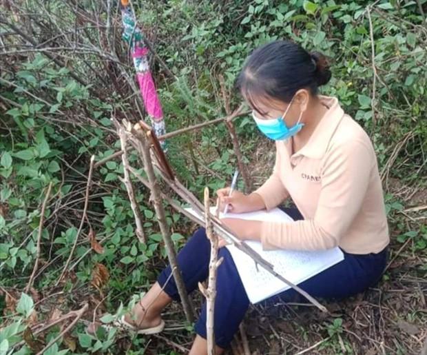 Những góc học online đặc biệt giữa núi rừng của học sinh vùng cao xứ Nghệ - Ảnh 1.